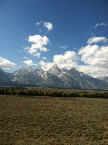 Why have I never gone through Grand Teton National Park in the fall?  It is a must.