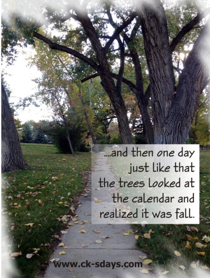 fall-2015.jpg