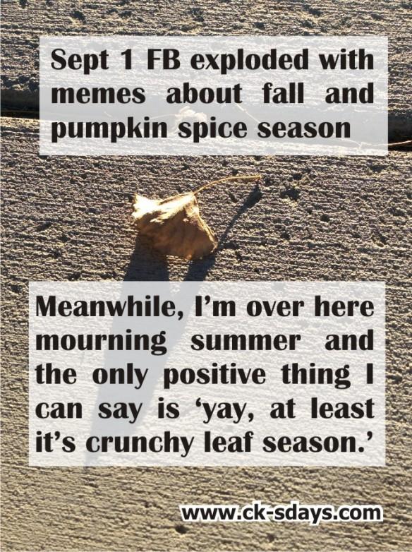 crunchy-leaf-season