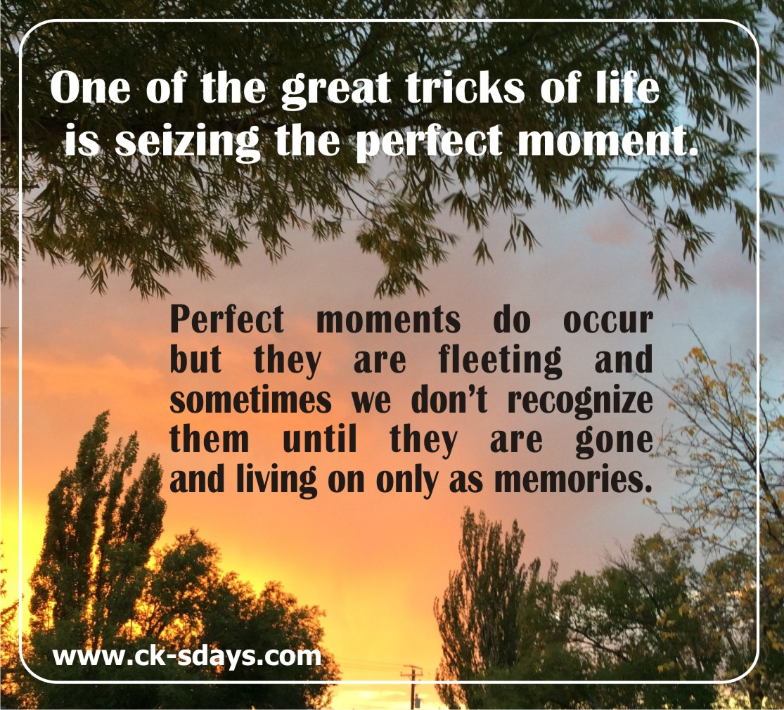 tricks-of-life