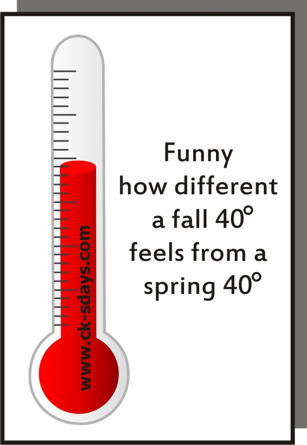 fall vs spring 40