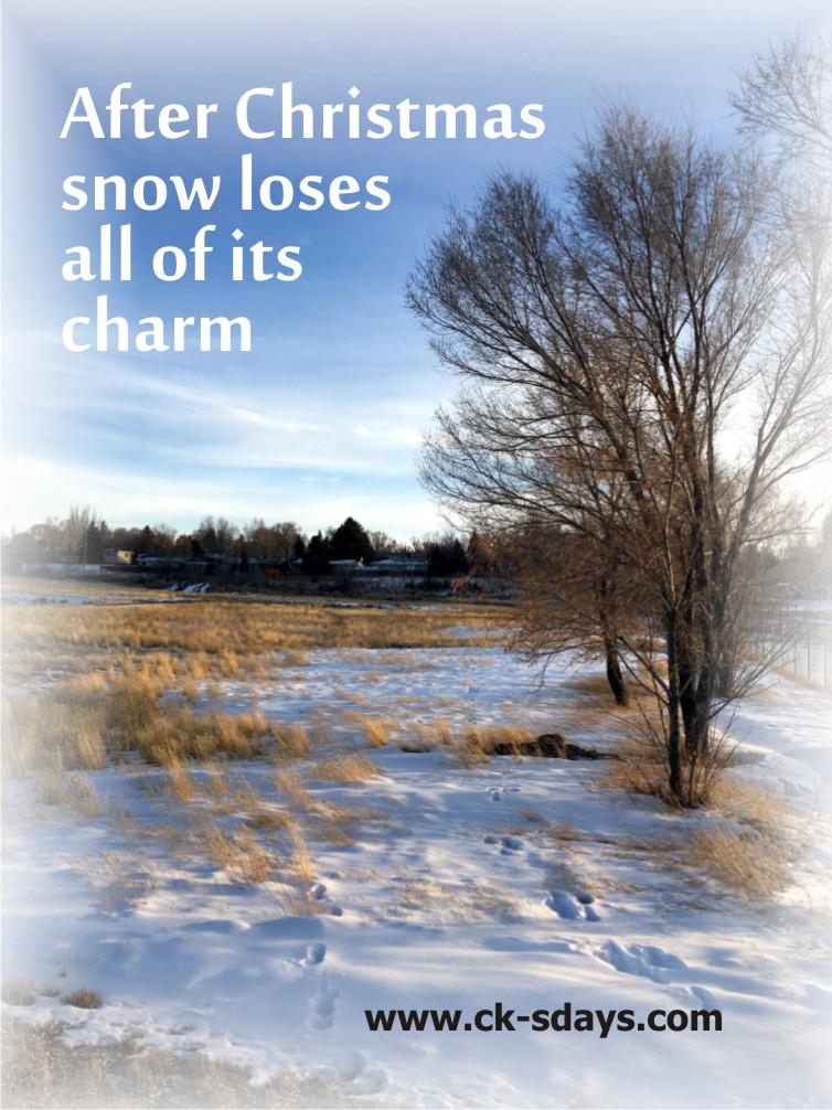 no charm snow
