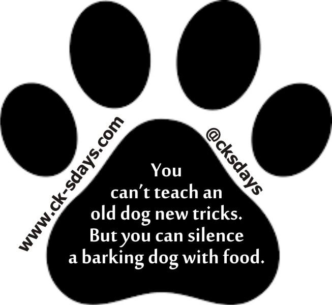 silence a dog