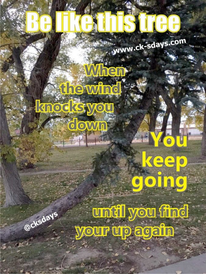 go until you find your up