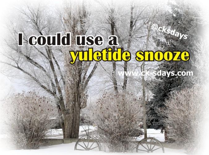 Yuletide snooze