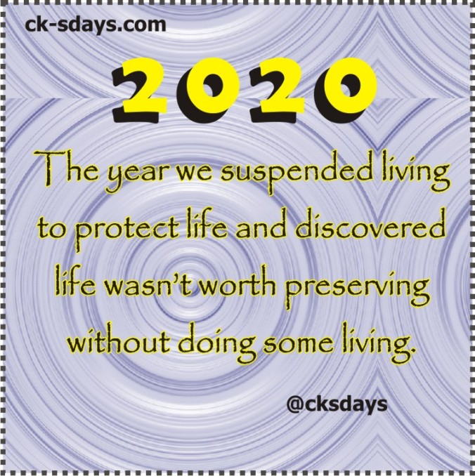 2020 suspended living